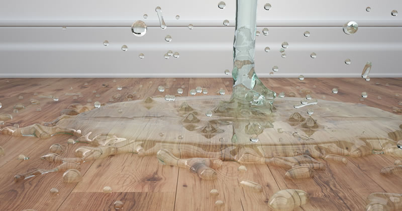 property water damage claim